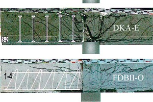 """<div class=""""bildtext_en"""">Crack pattern in sawn section of the test specimens, extract from [13] </div>"""