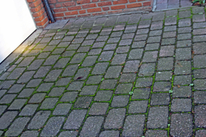"<div class=""bildnummer"">8</div><div class=""bildtext_en"">Green deposits on the concrete block pavement of the neighboring property </div>"