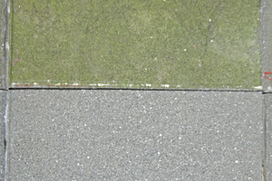 "<div class=""bildnummer"">11</div><div class=""bildtext_en"">Detailed picture of a slab without cleaning (at the top of the picture) and after cleaning with water and a wooden scrubbing brush (at the bottom of the picture) </div>"