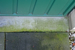 "<div class=""bildnummer"">7</div><div class=""bildtext_en"">Green deposits on the screed in front of the garage </div>"