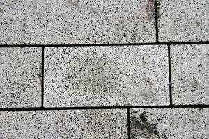 """<div class=""""bildtext"""">Verfärbungen durch dieVerwendung eines schwarzen Fugenmaterials bei weiß eingefärbten Betonpflastersteinen</div>"""