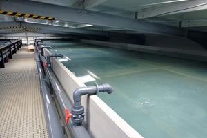 "<div class=""bildtext_en"">→ Fish-farming tank, Grevesmühlen, Germany</div>"